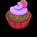 Berry-Cupcake icon