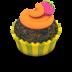 Chocolate-Orange-Cupcake icon