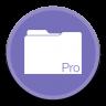 FileMakerPro icon