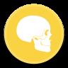 Anatomy icon