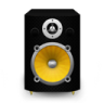 Speaker-Black-Plastic-plus-Yellow-Cone icon