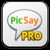 Picsaypro icon