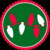 Christmas-Lights icon