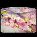 Folder-Nature-Cherry-Tree icon