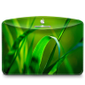 Folder-Nature-Leave icon