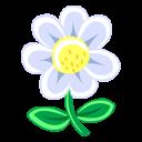 White-Flower icon