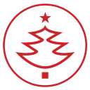 Christmas-tree icon