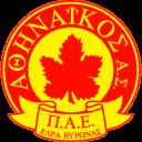 Athinaikos icon