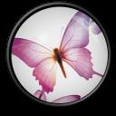 InDesign-CS-2 icon