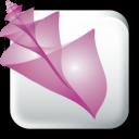 Adobe-Bridge-CS2 icon