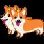 Dog-corgi icon