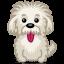 Dog-einstein icon
