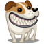 Dog-russel-grin icon
