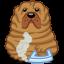 Dog-sharpei icon