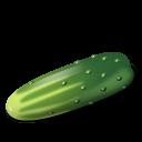 Vegetable-Cucumber icon