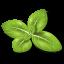 Herb-Basil icon