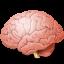 Body-Brain icon
