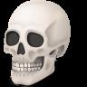 Body-Skull icon