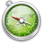 Safari-alt-2 icon