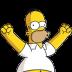 Homer-Simpson-04-Happy icon