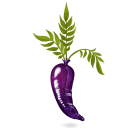 Latex-Carrot icon