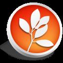 CS2-Standard icon