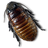 Caca-Roach icon