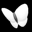 Msn-explorer icon