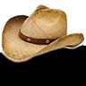 Hat-cowboy-straw icon