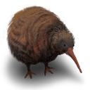 Kiwi-Flightless-Bird icon